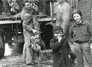 First delivery of bananas to Brighton after the Second World War